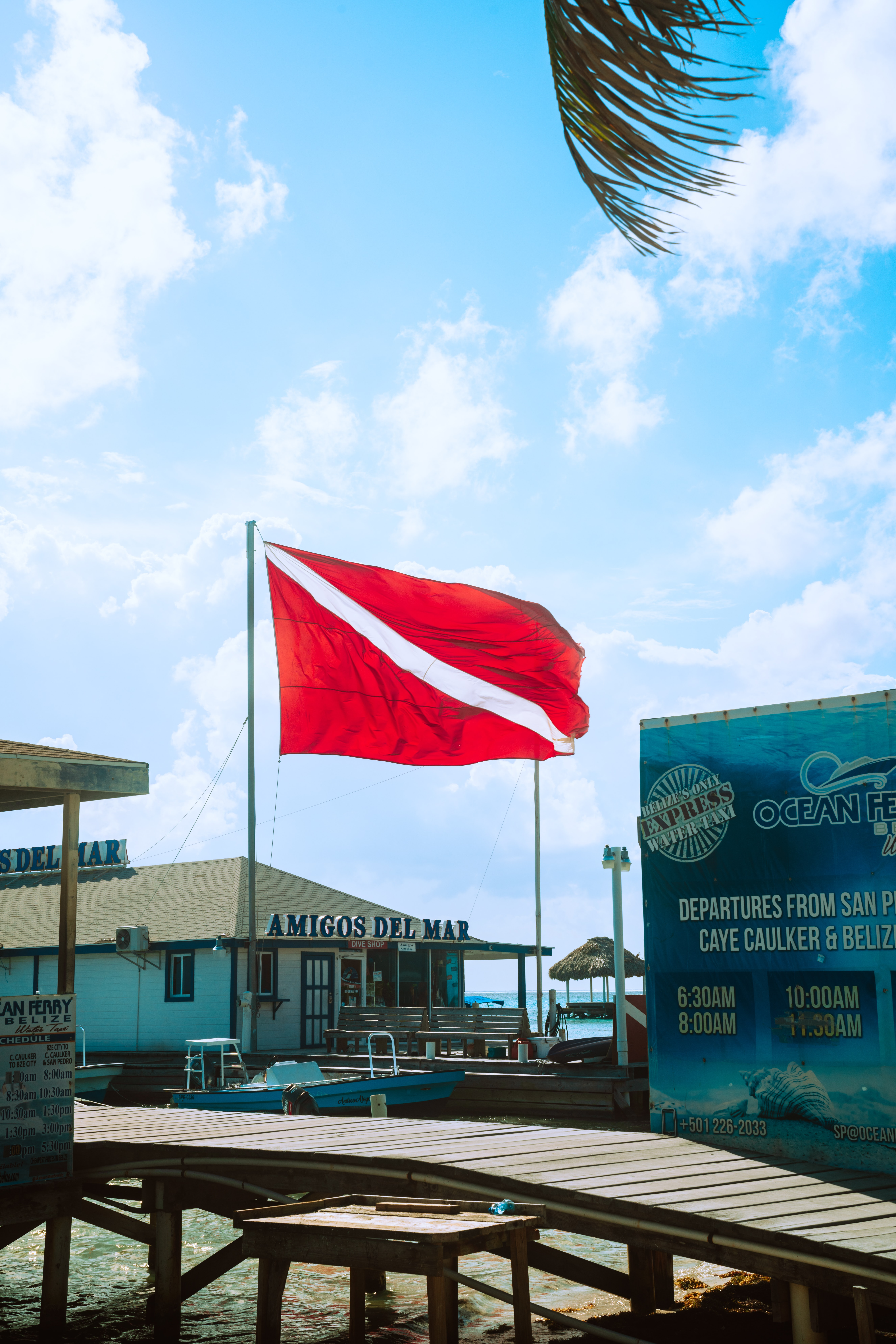 Brief Overview of Dive Flags